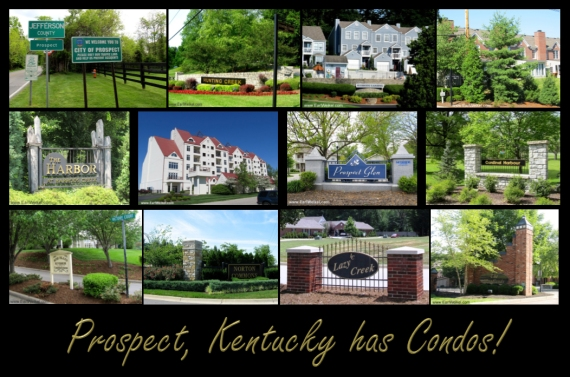 Prospect KY has Condos Condominiums For Sale In 40059 Patio Homes Townhouses Marina View Condos