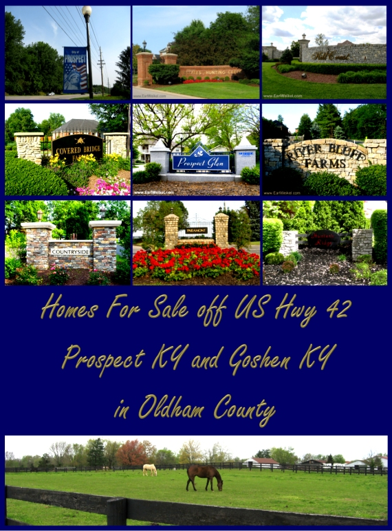 Homes_For_Sale_off_US_Hwy_42_Prospect_KY_Goshen_KY_Oldham_County_Kentucky
